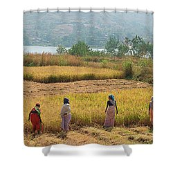 Skn 2617 Family Business Color Shower Curtain