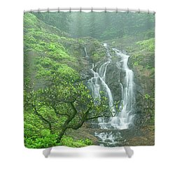 Skn 3758 Admiring Your Beauty Shower Curtain