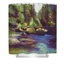 Skokomish River Shower Curtain by Mary McInnis