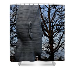 Skulduggery Shower Curtain