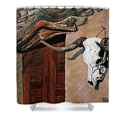 Skull En La Casa Shower Curtain