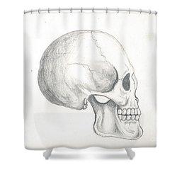 Skull Study Shower Curtain