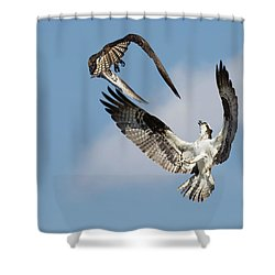 Sky Duel Shower Curtain