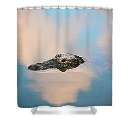 Sky Gator Shower Curtain