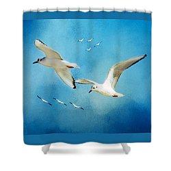 Sky High Flight Shower Curtain