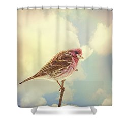 Sky High Shower Curtain