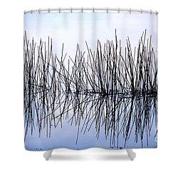 Sky Needles Shower Curtain
