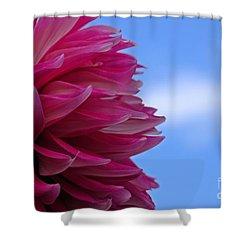 Sky Petals Shower Curtain