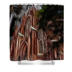 Sky Spirits 2 Shower Curtain by William Horden