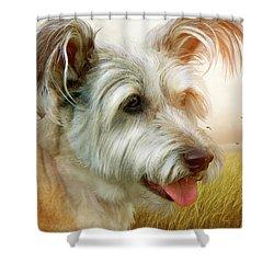Skye Terrier Shower Curtain