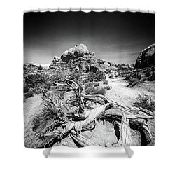 Skyline Arch In Arches National Park Shower Curtain