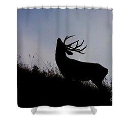 Skyline Monarch Shower Curtain