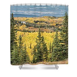Skyway View Shower Curtain