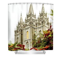 Slc Temple Angle Shower Curtain
