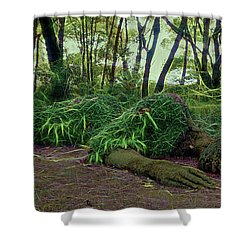 Sleeping Beauty Shower Curtain by Ron Harpham