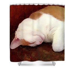 Sleeping Boo Shower Curtain by Gary Grayson