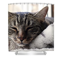 Easy Life Shower Curtain