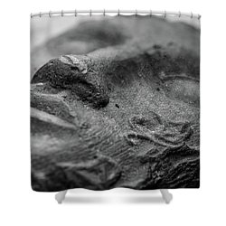 Shower Curtain featuring the photograph Sleeping by Clare Bambers