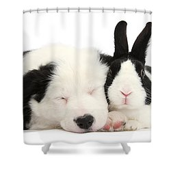 Sleeping In Black And White Shower Curtain