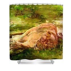 Sleeping Lionness Pushy Squirrel Shower Curtain