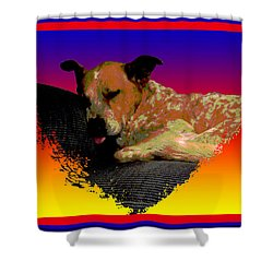 Sleeping Soundly Shower Curtain by One Rude Dawg Orcutt