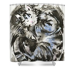 Shower Curtain featuring the painting Sleeping Tabby Cat by Zaira Dzhaubaeva