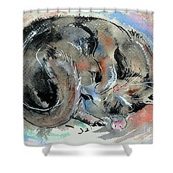 Shower Curtain featuring the painting Sleeping Tortoiseshell Cat by Zaira Dzhaubaeva