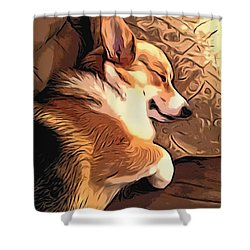 Banjo The Sleeping Welsh Corgi Shower Curtain by Kathy Kelly