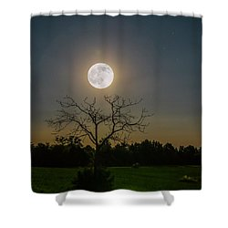 Sleepy Hollow Shower Curtain