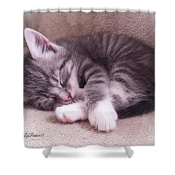 Sleepy Kitten Bymaryleeparker Shower Curtain by MaryLee Parker