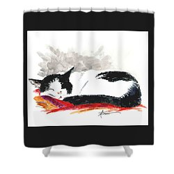 Sleepy Time Boy Shower Curtain