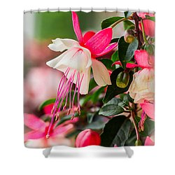 Slice Of Asian Garden Shower Curtain