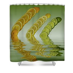 Shower Curtain featuring the photograph Slices  Grapefruit Lemon Lime Citrus Fruit by David French