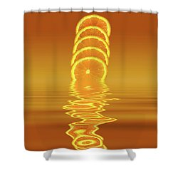 Slices Orange Citrus Fruit Shower Curtain by David French