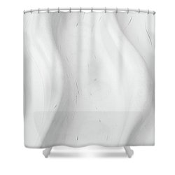 Slide Shower Curtain by Richard Rizzo