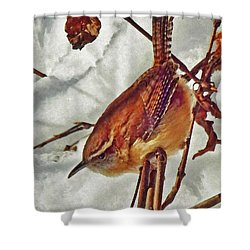 Slim Pickens, Carolina Wren Shower Curtain