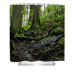 Shower Curtain featuring the photograph Slippery When Wet by Sharon Talson