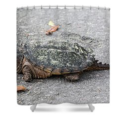 Slow Crossing 3 March 2018 Shower Curtain