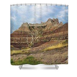 Slow Erosion Shower Curtain