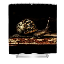 Slow Mover Shower Curtain