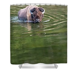 Slow Wadeing  Shower Curtain