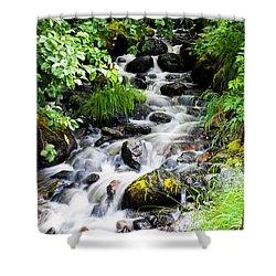 Small Alaskan Waterfall Shower Curtain
