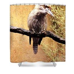Small Bird Shower Curtain