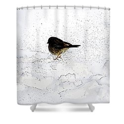 Small Bird On Snow Shower Curtain by Craig Walters