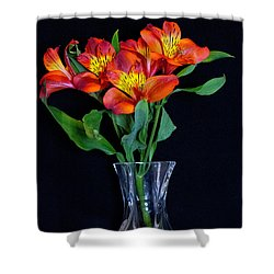 Small Bouquet Of Flowers Shower Curtain
