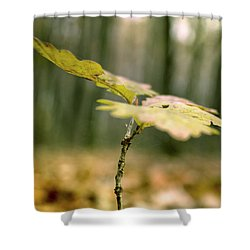 Small Branch With Yellow Leafs Close-up Shower Curtain