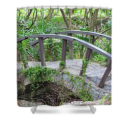 Shower Curtain featuring the photograph Small Brown Bridge by Raphael Lopez