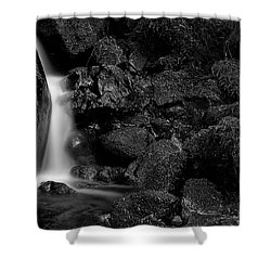 Small Fall Shower Curtain