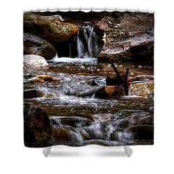 Small Falls Shower Curtain by Elaine Malott