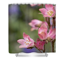 Small Flowers Shower Curtain by Tine Nordbred